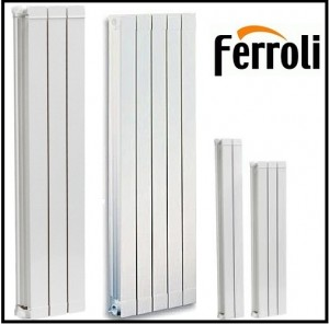 poza Elementi aluminiu FERROLI H 1200